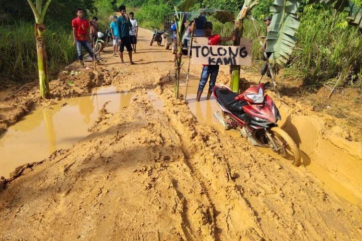 Kesal Bertahun-tahun Jalan Rusak di Kutai Timur Tak Diperbaiki, Warga Tanami Pohon Pisang