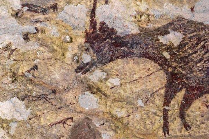 Arkeolog Temukan Lukisan Batu Tertua Di Dunia Di Maros Sulawesi Selatan