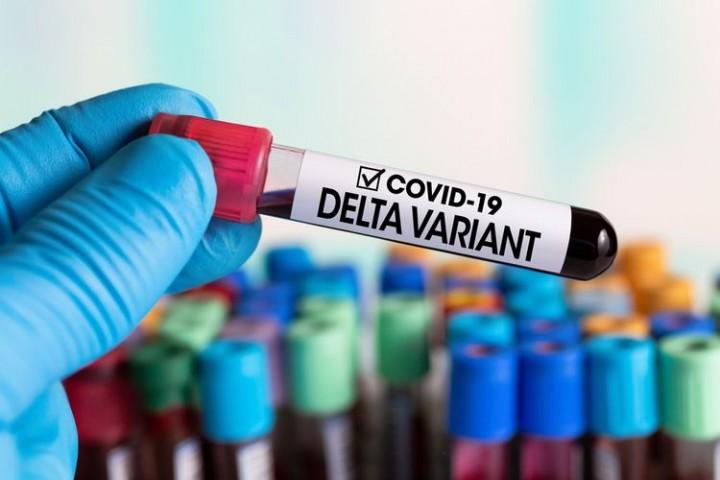 Hasil Uji Laboratorium Kemenkes; Varian Delta Sudah Masuk Bontang Sejak Juni