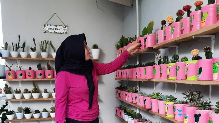 Menanam Kaktus di Pekarangan Rumah, Zahra Bisa Kantongi Rp 2 juta Sebulan