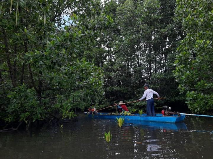 Kembangkan Potensi Mangrove, Pupuk Kaltim Raih Penghargaan AREA 2021 Kategori Social Empowerment